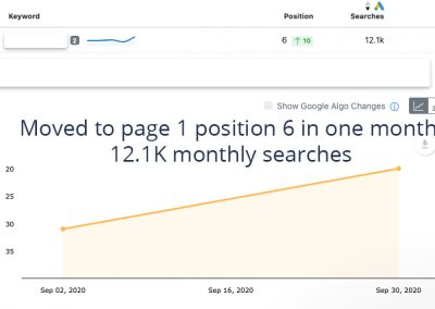 Fast SEO ranking results